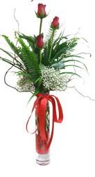 Erzurum çiçek servisi , çiçekçi adresleri  3 adet kirmizi gül vazo içerisinde