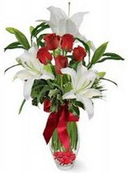 Erzurum yurtiçi ve yurtdışı çiçek siparişi  5 adet kirmizi gül ve 3 kandil kazablanka