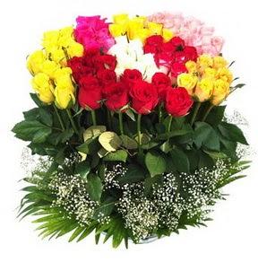 Erzurum ucuz çiçek gönder  51 adet renkli güllerden aranjman tanzimi