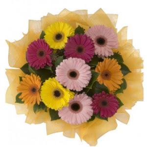 Erzurum internetten çiçek siparişi  11 adet karışık gerbera çiçeği buketi