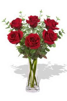 Erzurum çiçek online çiçek siparişi  6 kırmızı gül vazosu