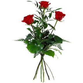 Erzurum çiçek gönderme sitemiz güvenlidir  3 adet kırmızı gülden buket