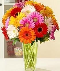 Erzurum çiçek , çiçekçi , çiçekçilik  15 adet gerbera çiçek vazosu