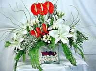 Erzurum ucuz çiçek gönder  Anthurim Kazablanka  gül