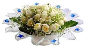 Erzurum çiçek satışı  11 adet Beyaz güller özel cam tanzim