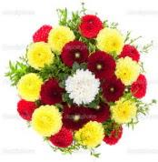 Erzurum çiçek online çiçek siparişi  13 adet mevsim çiçeğinden görsel buket