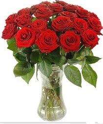 Erzurum ucuz çiçek gönder  Vazoda 15 adet kırmızı gül tanzimi