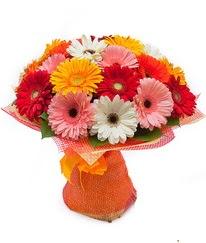 Renkli gerbera buketi  Erzurum çiçek gönderme