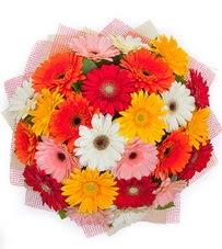 15 adet renkli gerbera buketi  Erzurum çiçek siparişi sitesi