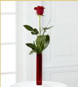 Vazo içerisinde 1 adet kırmızı gül  Erzurum güvenli kaliteli hızlı çiçek