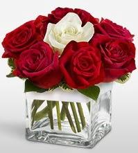 Tek aşkımsın çiçeği 8 kırmızı 1 beyaz gül  Erzurum çiçek gönderme sitemiz güvenlidir