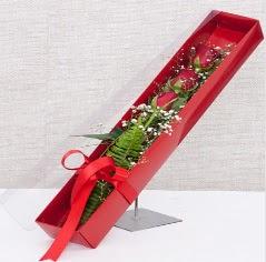 Kutu içerisinde 3 adet kırmızı gül  Erzurum online çiçekçi , çiçek siparişi