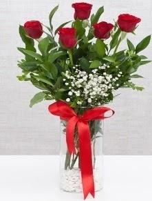 cam vazo içerisinde 5 adet kırmızı gül  Erzurum İnternetten çiçek siparişi