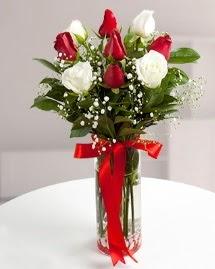 5 kırmızı 4 beyaz gül vazoda  Erzurum İnternetten çiçek siparişi