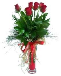vazo içerisinde 5 kırmızı gül  Erzurum çiçekçi mağazası