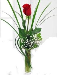 Cam içerisinde 1 kırmızı gül  Erzurum çiçek siparişi vermek