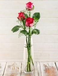 Cam içerisinde 3 kırmızı gül  Erzurum uluslararası çiçek gönderme