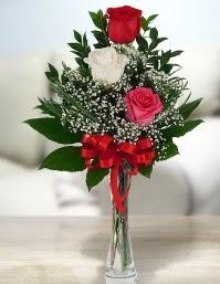Camda 2 kırmızı 1 beyaz gül  Erzurum anneler günü çiçek yolla