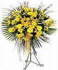 Erzurum çiçek siparişi sitesi  Sari kazablanka Ferforje