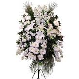 Erzurum çiçek yolla , çiçek gönder , çiçekçi   Ferforje beyaz renkli kazablanka