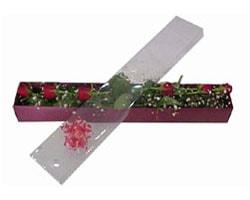 Erzurum çiçek gönderme   6 adet kirmizi gül kutu içinde