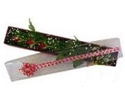 Erzurum hediye sevgilime hediye çiçek  3 adet gül.kutu yaldizlidir.