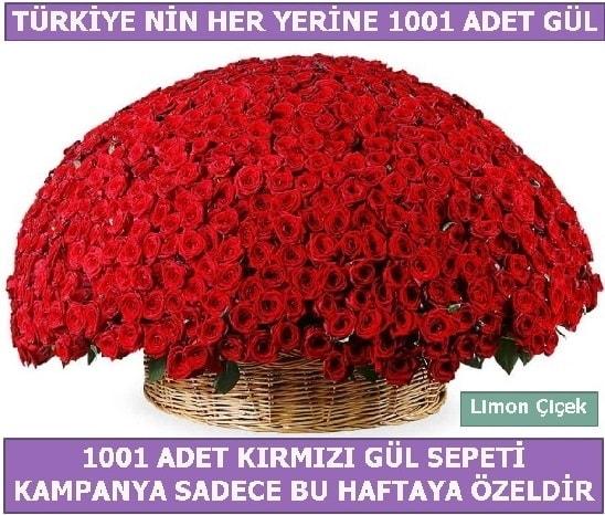 1001 Adet kırmızı gül Bu haftaya özel  Erzurum internetten çiçek siparişi