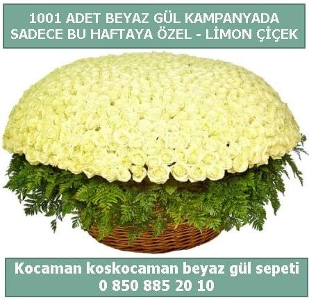 1001 adet beyaz gül sepeti özel kampanyada  Erzurum çiçek siparişi vermek