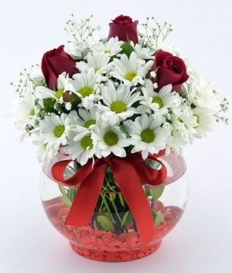 Fanusta 3 Gül ve Papatya  Erzurum çiçek mağazası , çiçekçi adresleri