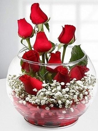 Kırmızı Mutluluk fanusta 9 kırmızı gül  Erzurum çiçek servisi , çiçekçi adresleri