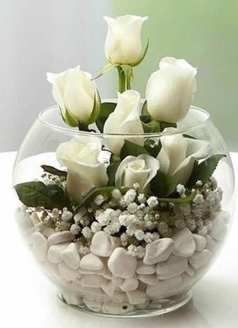 Beyaz Mutluluk 9 beyaz gül fanusta  Erzurum çiçek servisi , çiçekçi adresleri