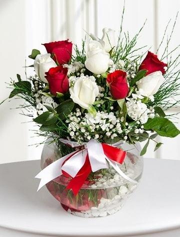 Aşk Küresi  5 beyaz 5 kırmızı gül fanusta  Erzurum çiçek mağazası , çiçekçi adresleri