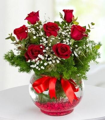 fanus Vazoda 7 Gül  Erzurum 14 şubat sevgililer günü çiçek