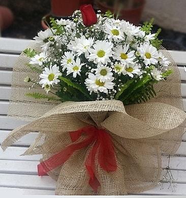 Papatya 1 adet kırmızı gül buketi  Erzurum kaliteli taze ve ucuz çiçekler