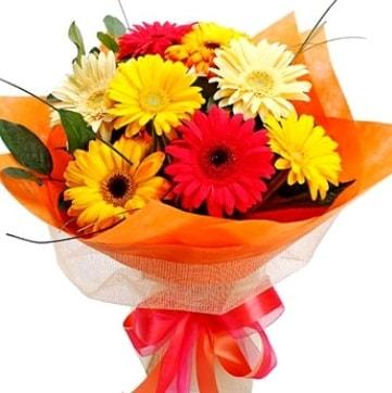 9 adet karışık gerbera buketi  Erzurum 14 şubat sevgililer günü çiçek