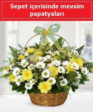 Sepet içerisinde mevsim papatyaları  Erzurum anneler günü çiçek yolla